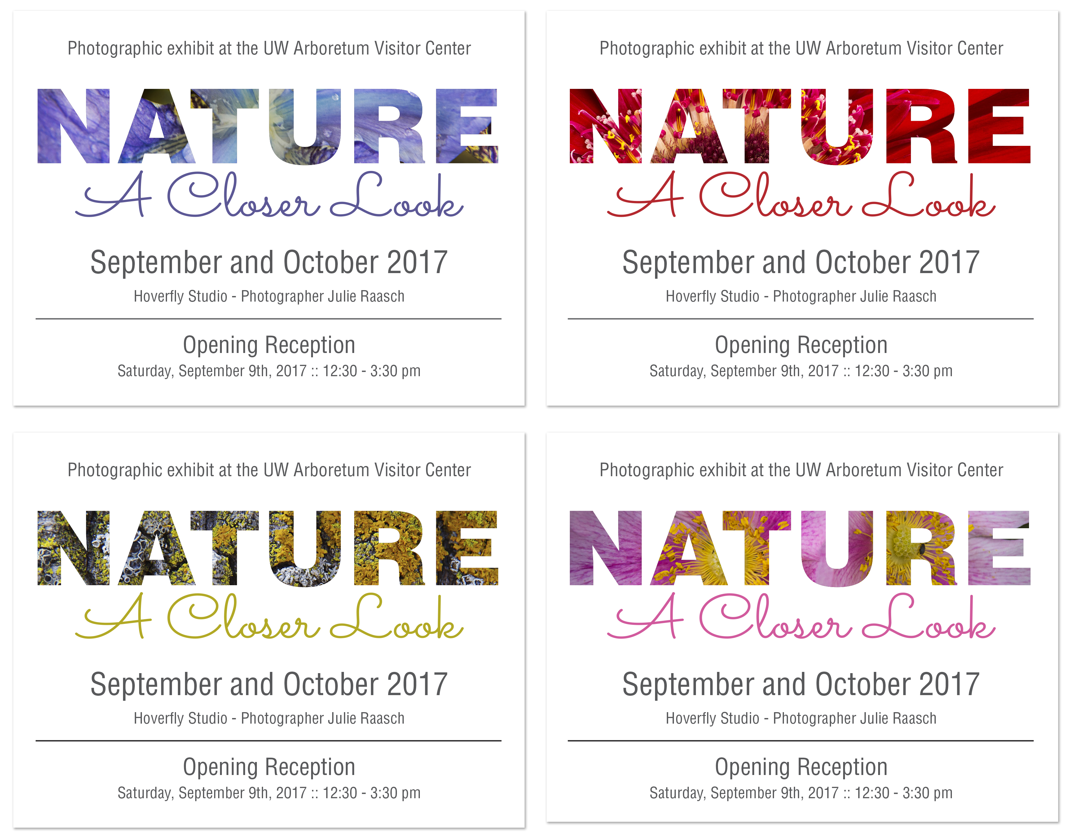 nature a closer look cards